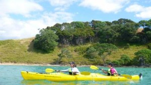 Te Ara Moana Auckland Sea Kayak 3