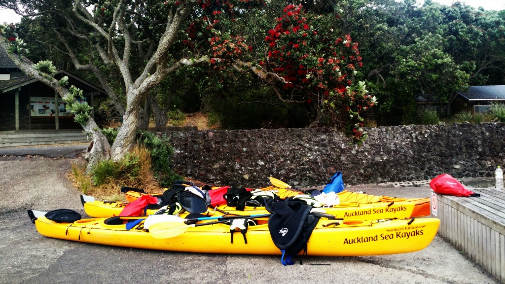 sea kayaking, kayaks, Auckland, New Zealand, tour