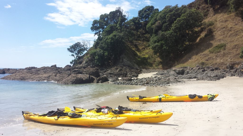 Waiheke island sea kayak multi day people