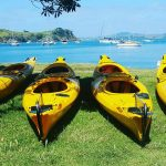 ECO NIIZH 565 Aucklannd Sea Kayaks
