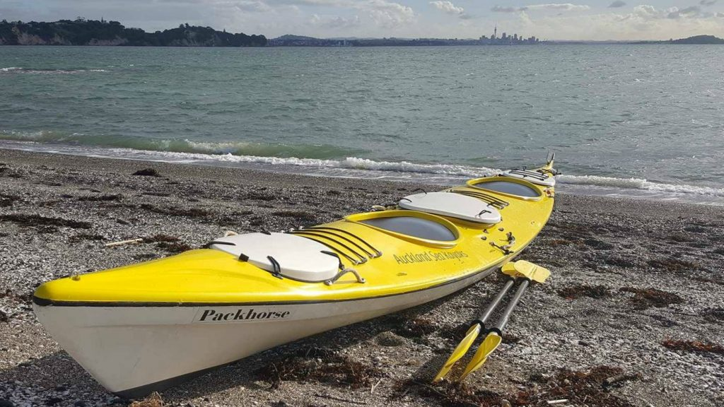 Paddling Perfection Sea Beer Auckland Sea Kayaks