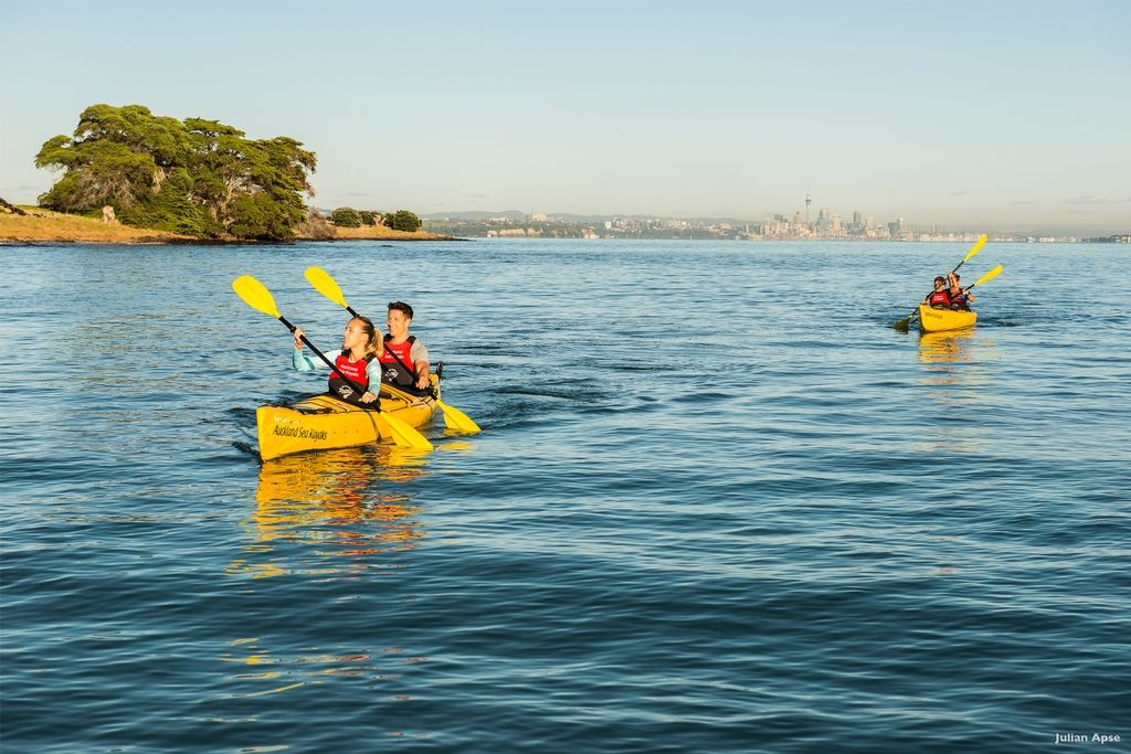 Day kayak tour to Rangitoto. Kayak tours in Auckland
