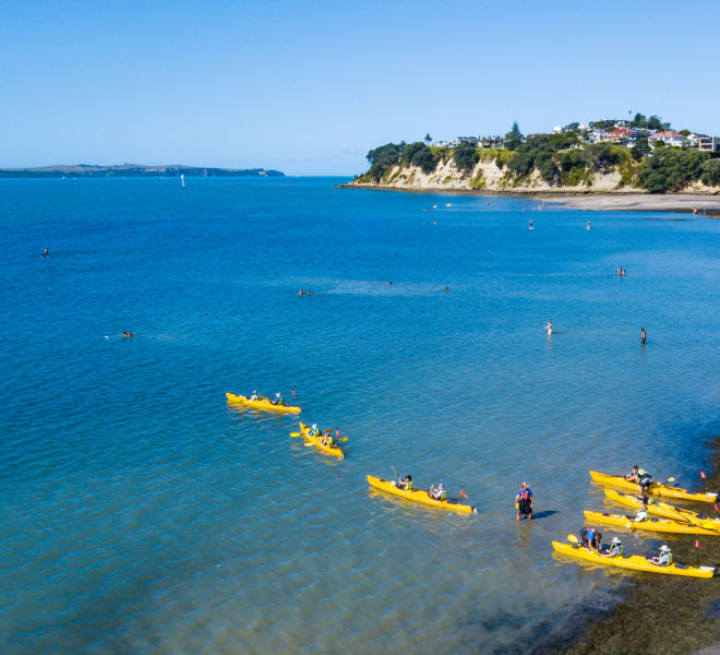 Auckland Sea Kayaks team building