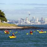 Browns island Motukorea kayak tour