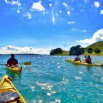 browns island motukorea kayak
