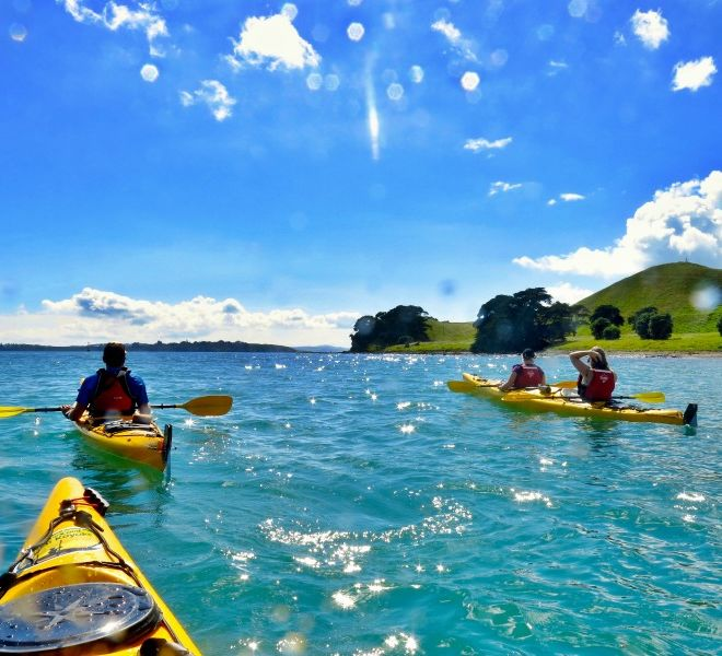 Rangitoro Day sea kayak tour
