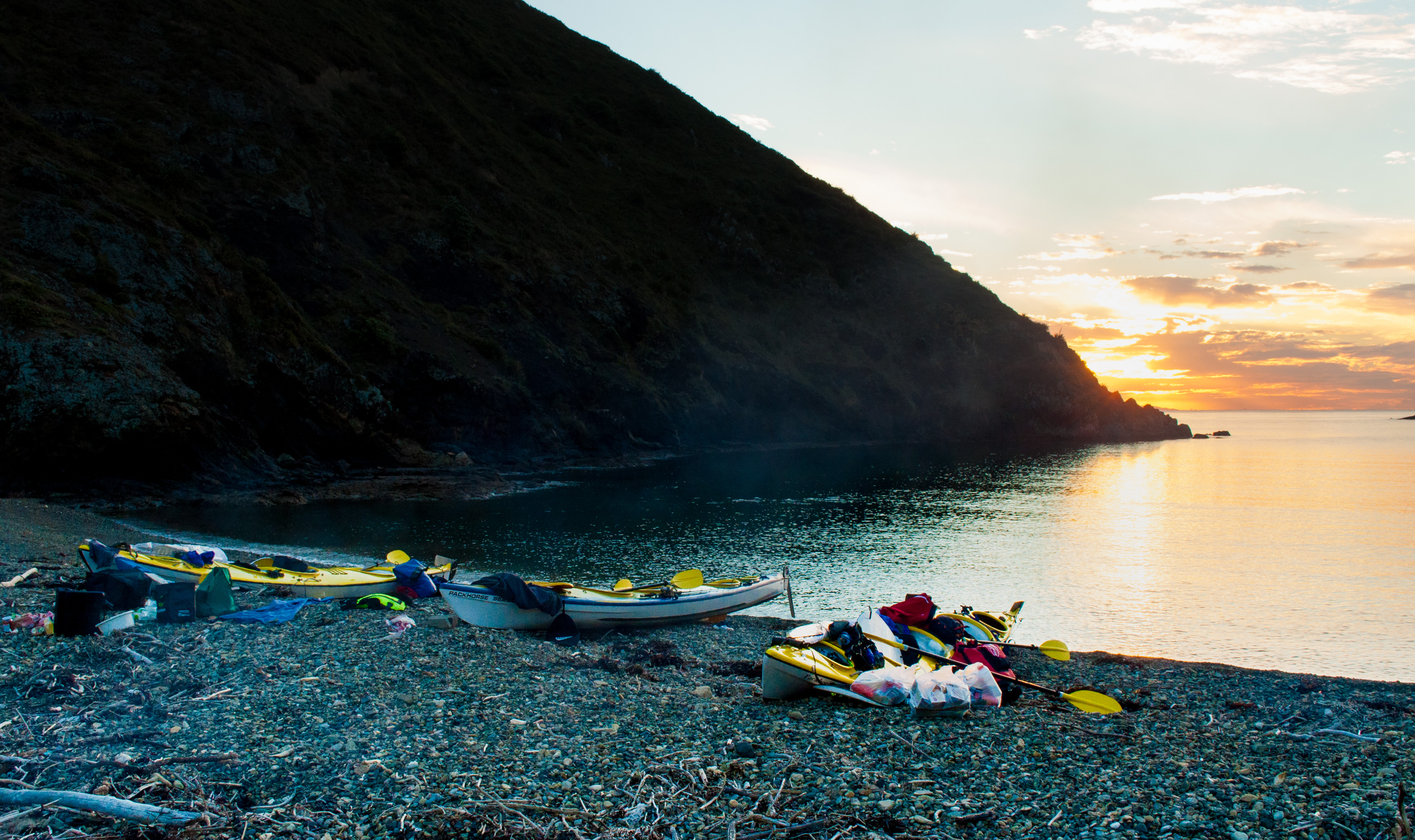 sea kayaking great barrier island