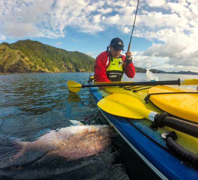 Great barrier island kayak with Auckland sea kayaks