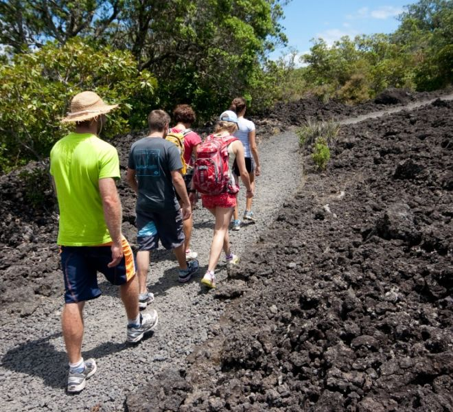 Guided hike on Rangitoto island Auckland with Auckland Sea Kayaks