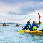 Team Building with Auckland Sea Kayaks