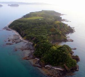 Motuora island current hauraki gulf marine park