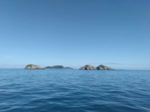 The noises hauraki gulf seen from sea kayak