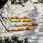 Auckland Sea Kayaks Motukorea Island