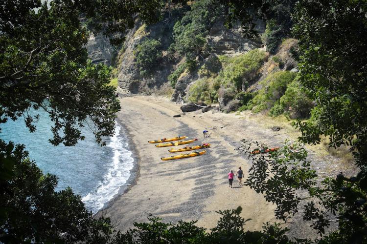 Auckland Auckland Sea Kayaks Motukorea Island