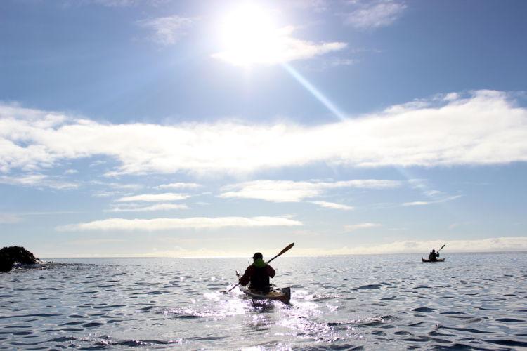 Auckland Sea Kayaks Sparkling Apart
