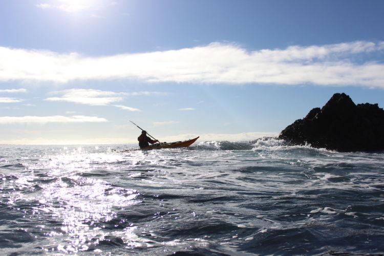 Auckland Sea Kayaks Sparkle on the sea