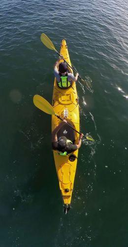 Auckland Sea Kayaks Kayak to Rangitoto Island Auckland