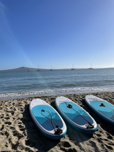 Auckland Sea Kayaks A Mission Bay Morning